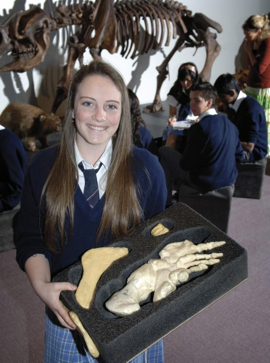 Student with Diprotodon fossils