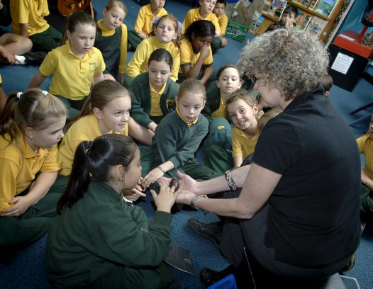 Students touch a cockroach at the Museum