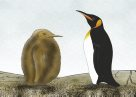 King Penguin adult and chick Illustration