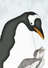 Gentoo Penguin Illustration