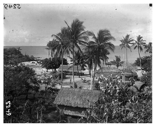 Medige village Darnley Island in 1920-21 #7