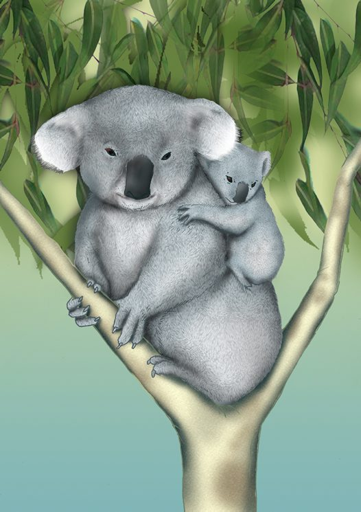 Koala and baby Illustration