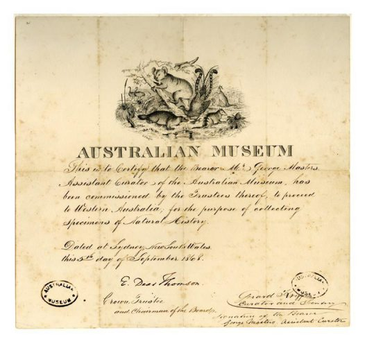 George Masters Collection Certificate