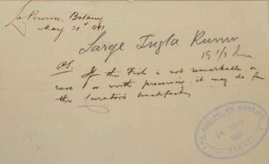 1881 accession letter