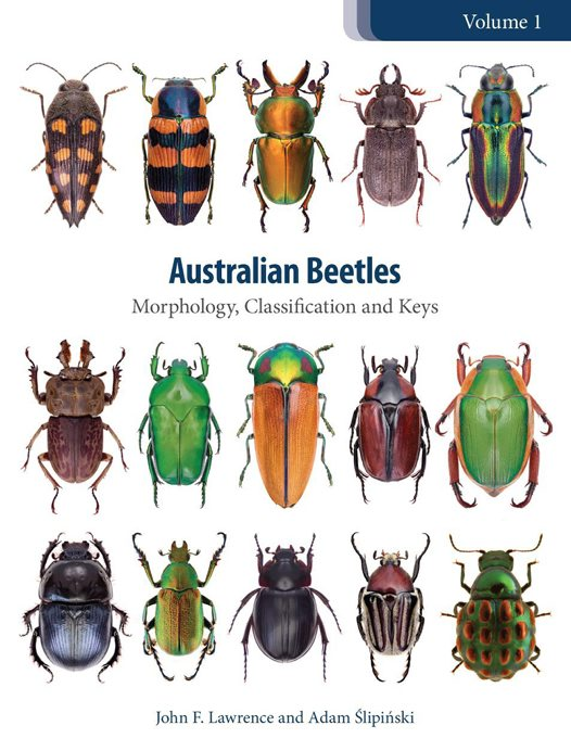 Australian Beetles cover