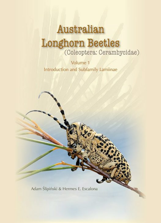Australian Longhorn Beetles cover