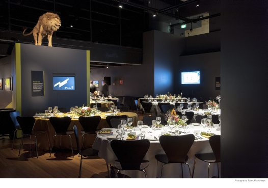 The Night at the Museum: Australian Museum Foundation Gala Dinner 2014
