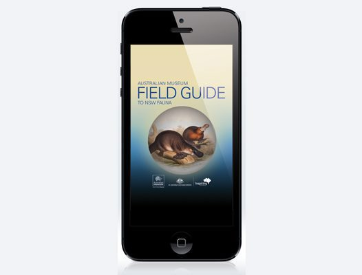 Field Guide to NSW Fauna app #1