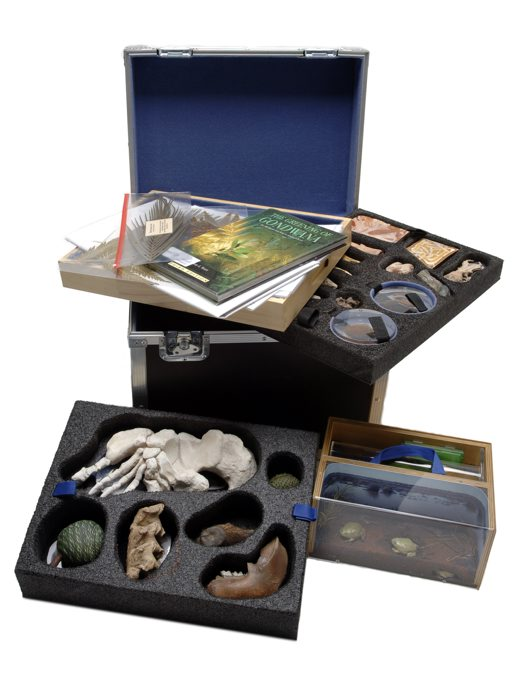 Museum in a Box - Evolution of Australian Biota