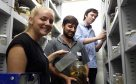 UNSW students in the fish collection
