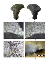 Use-wear traces and residues on an obsidian axe