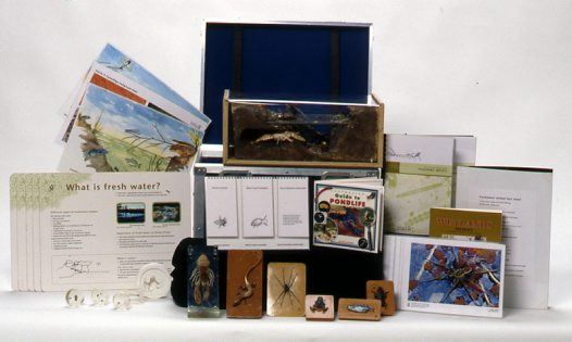 Museum in a Box - Life in Freshwater
