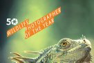Wildlife Photographer of the Year 2015