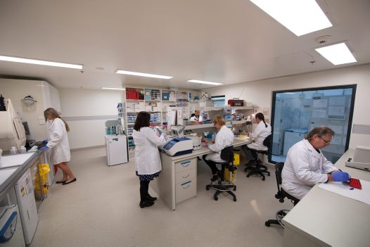 Australian Centre for Wildlife Genomics Staff