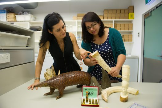 Dr Rebecca Johnson & Dr Greta Frankham – Australian Centre for Wildlife Genomics