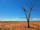 Simpson Desert Expedition 2015: horizon