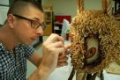 Conservator Sheldon Teare repairs a Malagan Mask