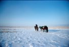 Tim Cope crossing Central Kazakhstan in winter