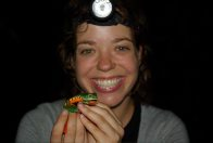 Jodi Rowley and Cruziohyla calcarifer