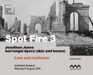 Kaldor Public Arts Project symposium: Spot Fire 3