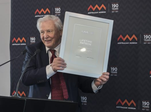 Sir David Attenborough becomes Lifetime Patron