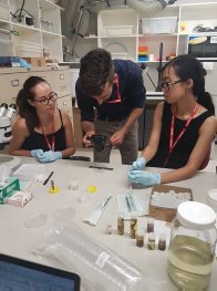 ACWG interns with samples for DNA analysis