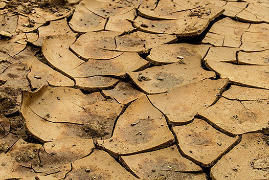 Cracked soil | © Public domain