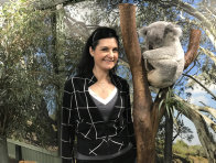 AMRI Director, Dr Rebecca Johnson, with a sleeping koala at Featherdale Wildlife Park