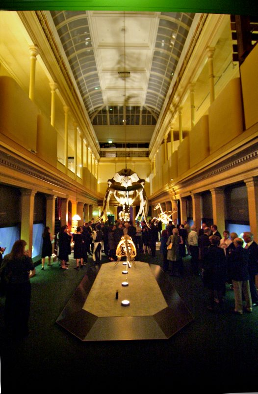 Skeleton Gallery - Long View