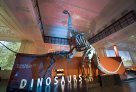 Venue: Dinosaur Gallery
