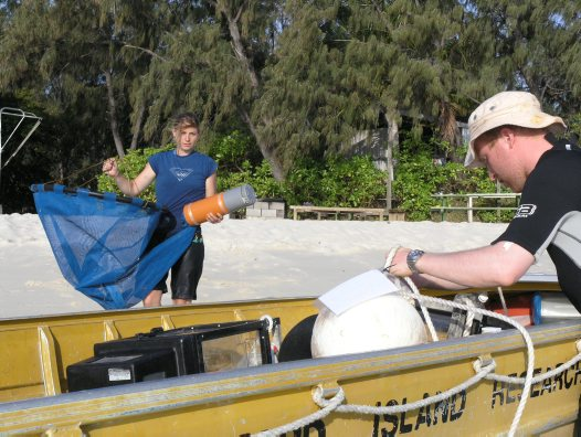 Collecting larval reef fish, Lizard Island Research Station