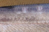 Southern Ribbonfish skin