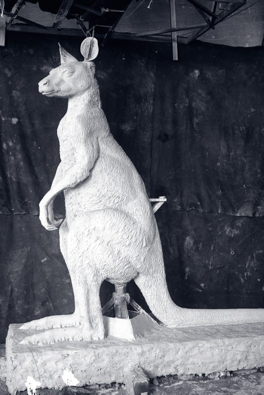 Three metre giant kangaroo model