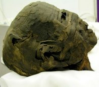 Ancient Egyptian Mummy E73942