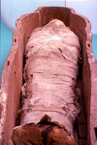 Ancient Egyptian mummy in coffin