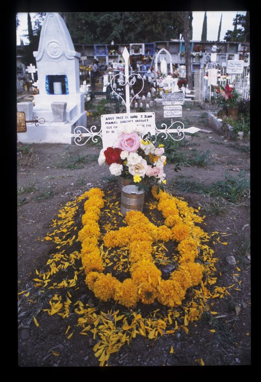 Day of the Dead 2002, 3