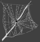 Web2spider Identification Guide: web types
