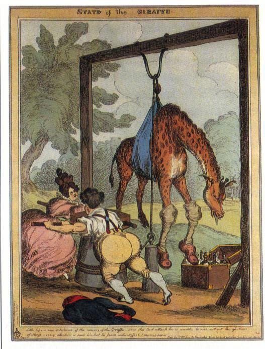 The 'State of the Giraffe', 1829