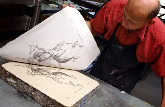 Lithography Process - the final print 2