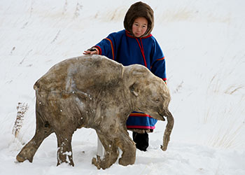 Film still from Waking the Baby Wooly Mammoth