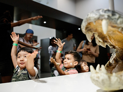 How does a crocodile go? Snap! Mini Explorers go on an excursion to Surviving Australia gallery, photographed by James Horan