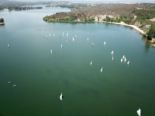 """Lake Burley Griffin - or should that be 'Lake Burley Green' December 2019 - looking a shade green there during an annual Sea Scouting race on the lake. Drought-like conditions saw little water running into the lake during 2019, with the National Capital Authority advising that lake water levels had dropped around half a metre before rains in February and March 2020 returned the water level to """"normal"""". NOTE: No photo editing undertaken, this is exactly how it was captured."""
