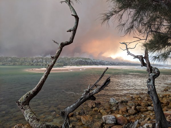 Narrawallee Creek Nature Reserve, 1:27 pm, 31 December 2019. The fire was heading down Buckley's Beach towards Narrawallee when the southerly hit and turned the fire back towards Conjola Park.