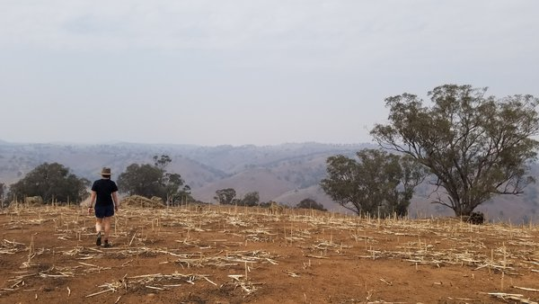 """Drought and smoke - """"this farm should be safe because there are no plants alive nearby to catch fire""""."""