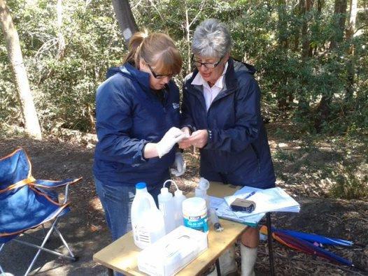 Streamwatch volunteers monitoring water quality