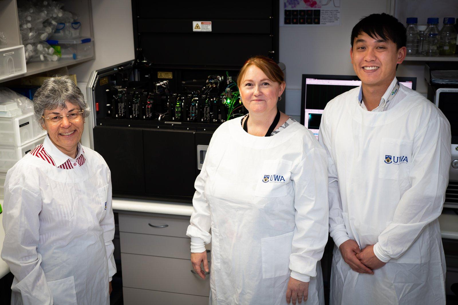 Professor Wendy Erber, Dr Kathryn Fuller and Henry Hui