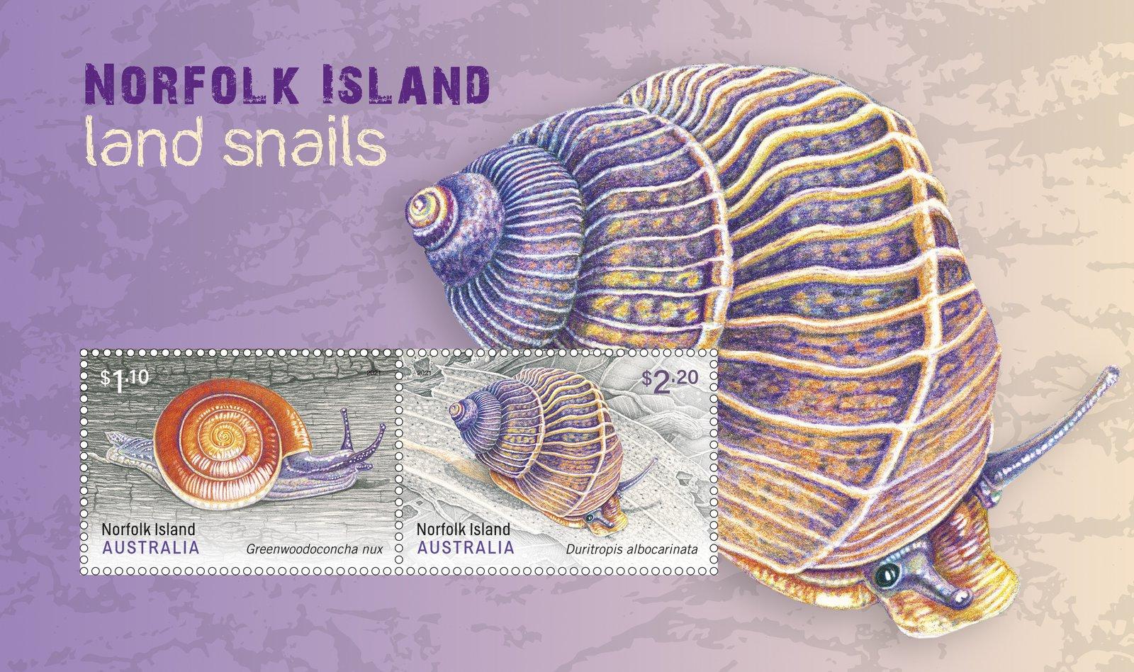 Norfolk Island: Land Snails postage stamp.