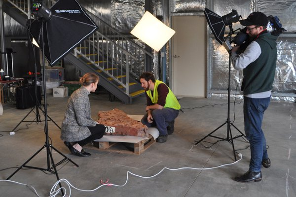3D scanning of fish fossils