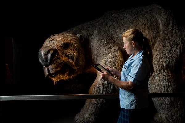 School girl looking at megafauna display
