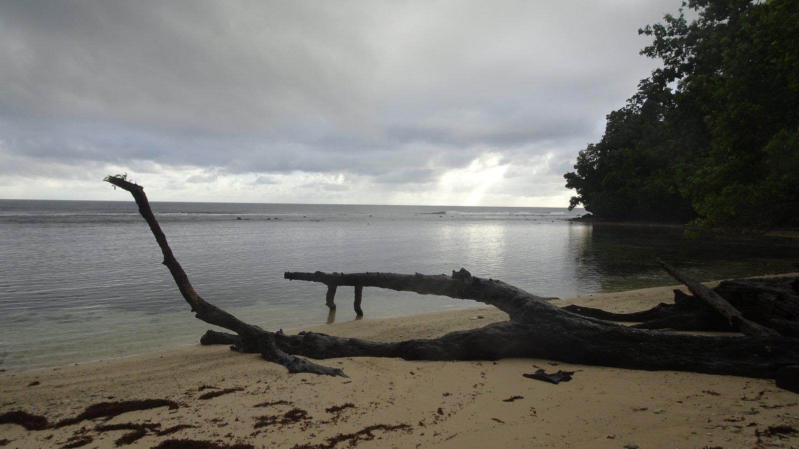 The island of Gala (4)